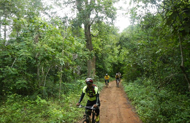 Angkor Archaeology Forest, Siem Reap Cycling Tour